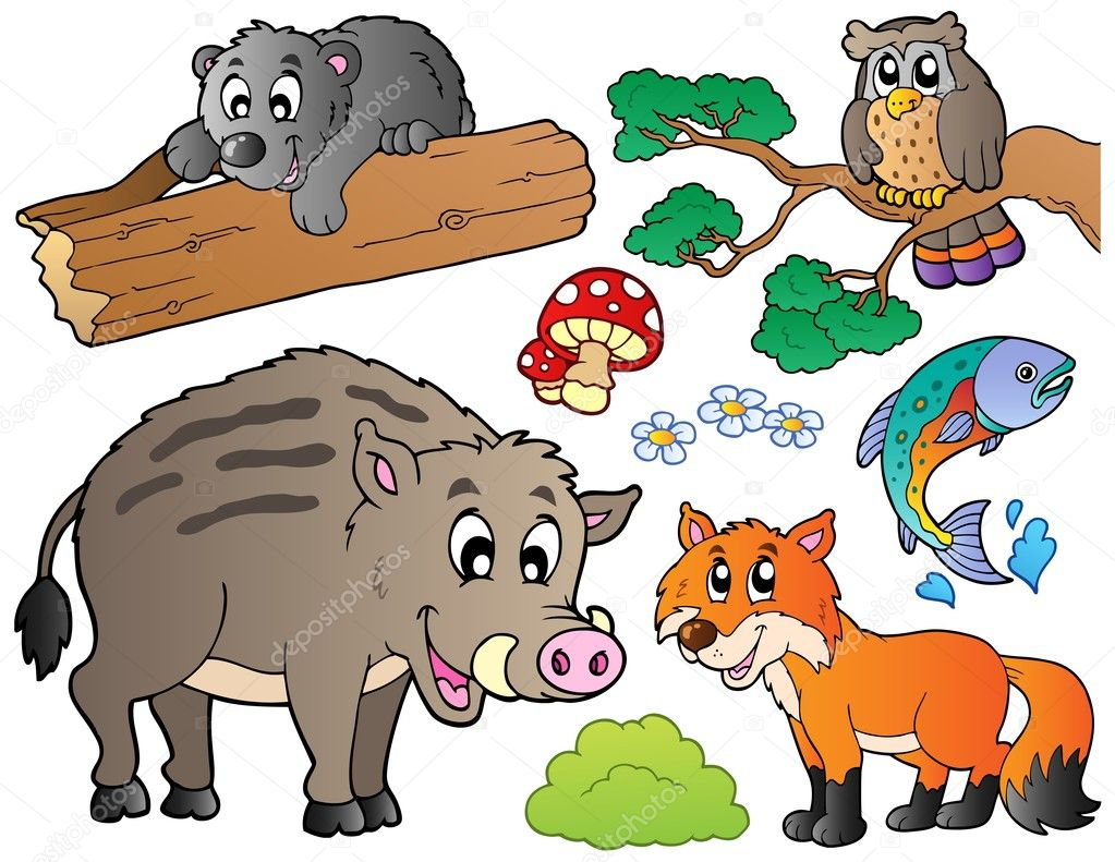 Lesni Kreslene Zvirata Sada 1 Stock Vektor C Clairev 5955570