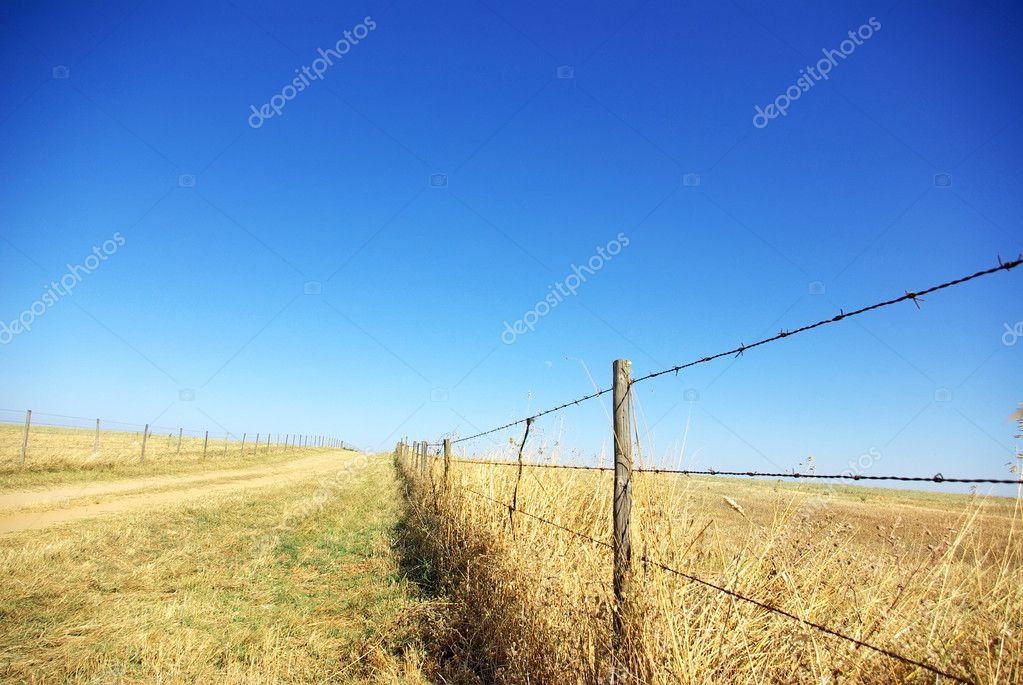 Barbed wire fence with blue sky at Portugal.