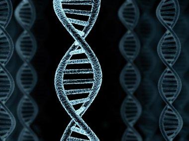 DNA spiral model
