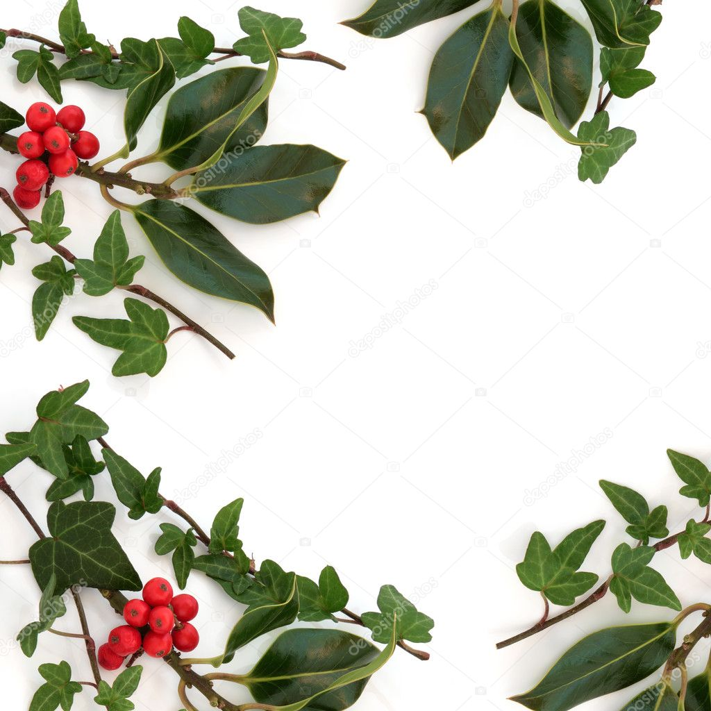 Holly and ivy border stock photo c marilyna 6269858 for Holly and ivy border