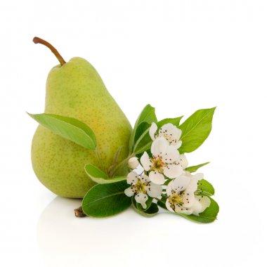 Pear Fruit
