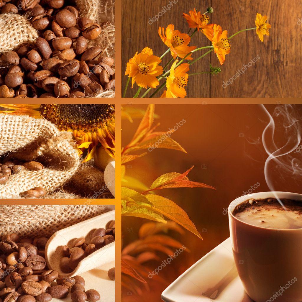 https://static6.depositphotos.com/1005680/642/i/950/depositphotos_6425418-stock-photo-coffee-collage.jpg