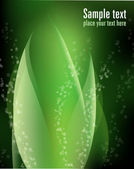 Abstraktní zelených rostlin