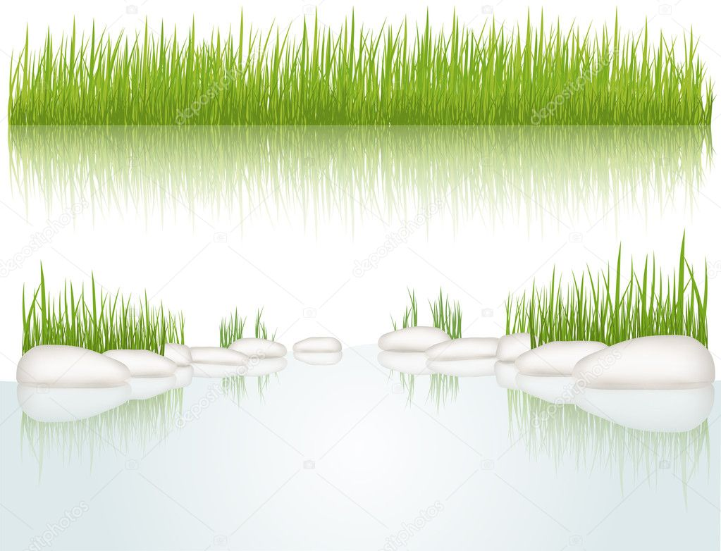 Grass. Vector illustration