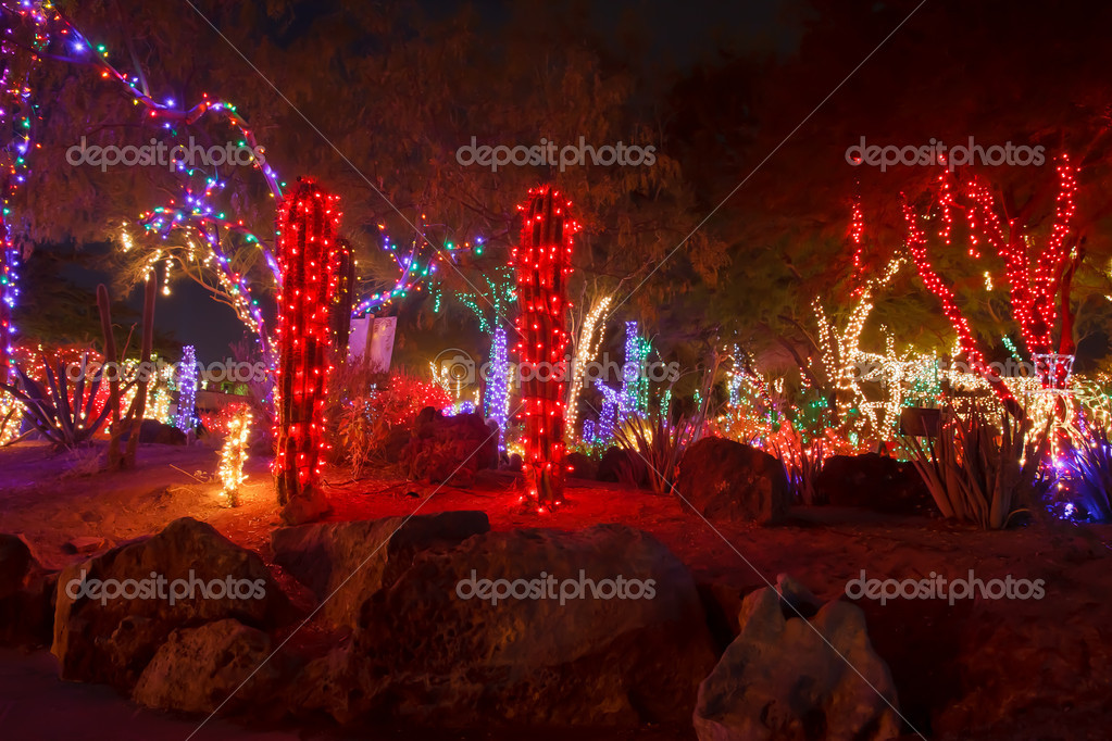 Red And White Christmas Lights.Red And White Christmas Lights In A Rock Garden Stock