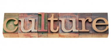 Culture - isolated word in vintage wood letterpress printing blocks stock vector
