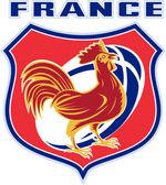 Rugby kohout maskot Francie