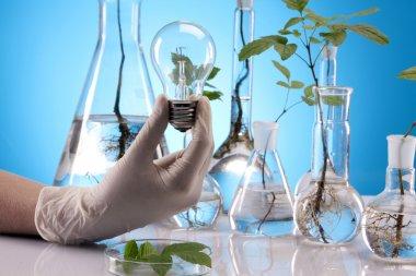 Ecologic laboratory, new source of energy!