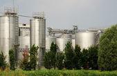 Fotografie Erneuerbare Energien: Biodiesel-Produktion