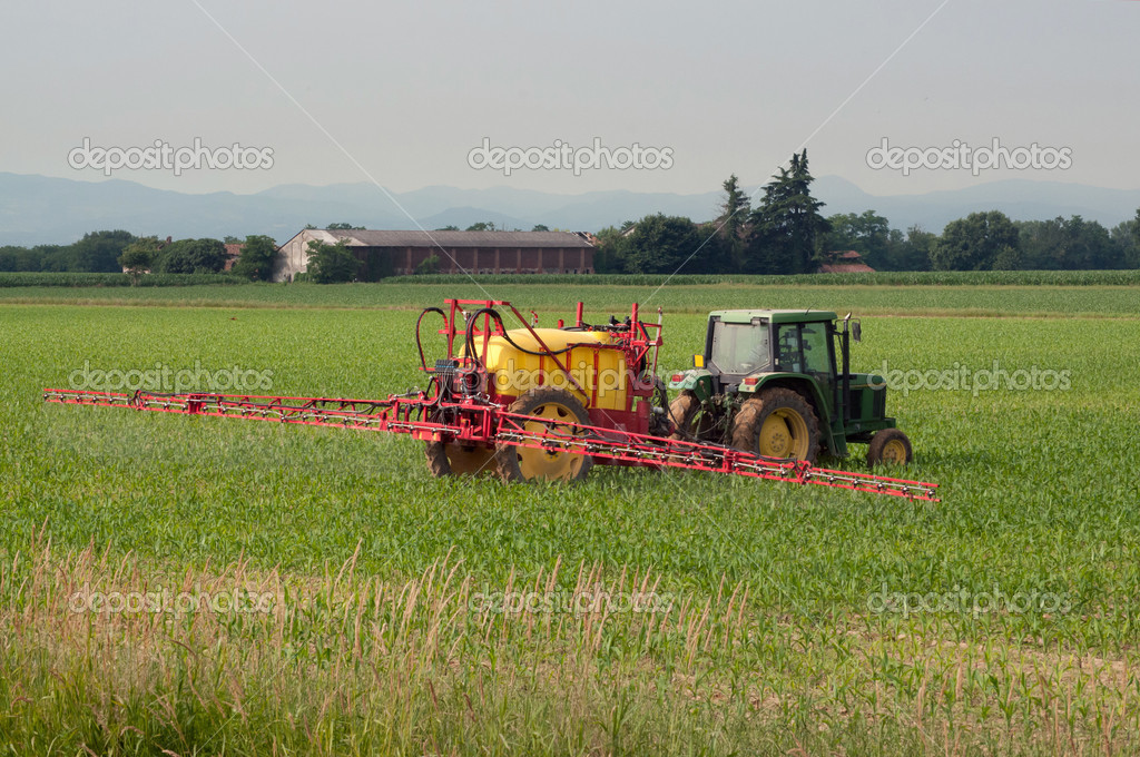 Irrigation with tractor on a wheat field