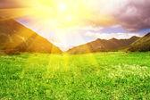 zelený kopec