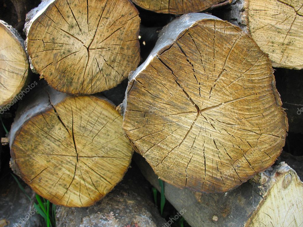 Stacked old wood tree logs stock photo arogant 5571811 for What to do with tree logs