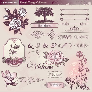 Flowers and vintage elements collection