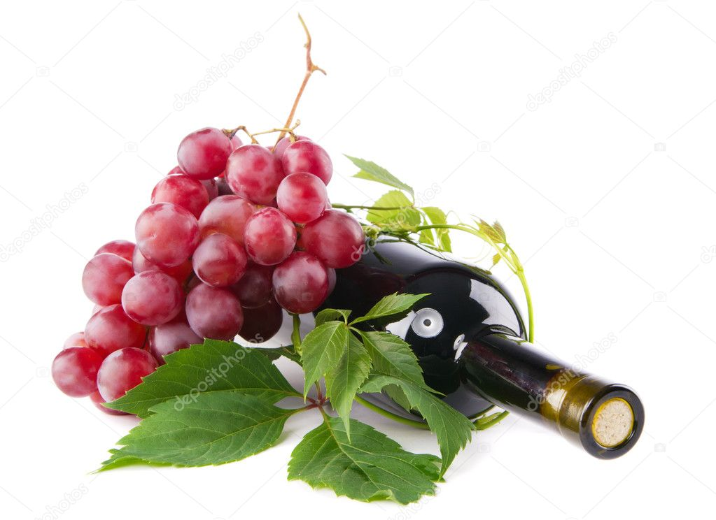 Bottle of red wine with grapes, white background