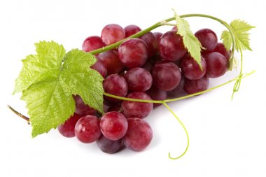 Red grapes with fresh leaves
