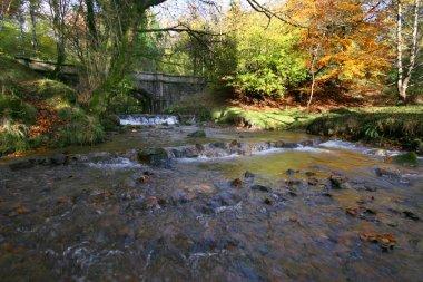 Piall bridge near Cornwood Dartmoor Devon