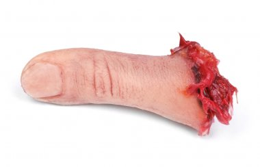 Artificial human finger