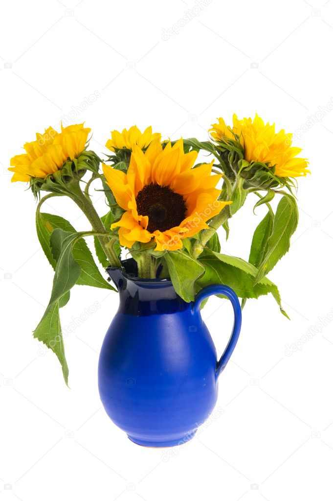 Bouquet Sunflowers In Blue Vase Stock Photo
