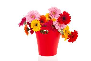 Modern vase flowers