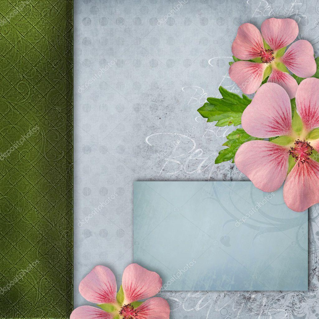 Couverture De L Album Avec Bouquet De Fleurs Roses Photographie