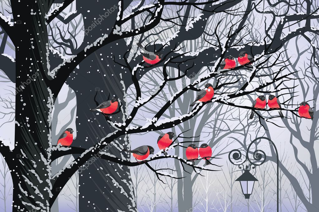 Bullfinches on trees