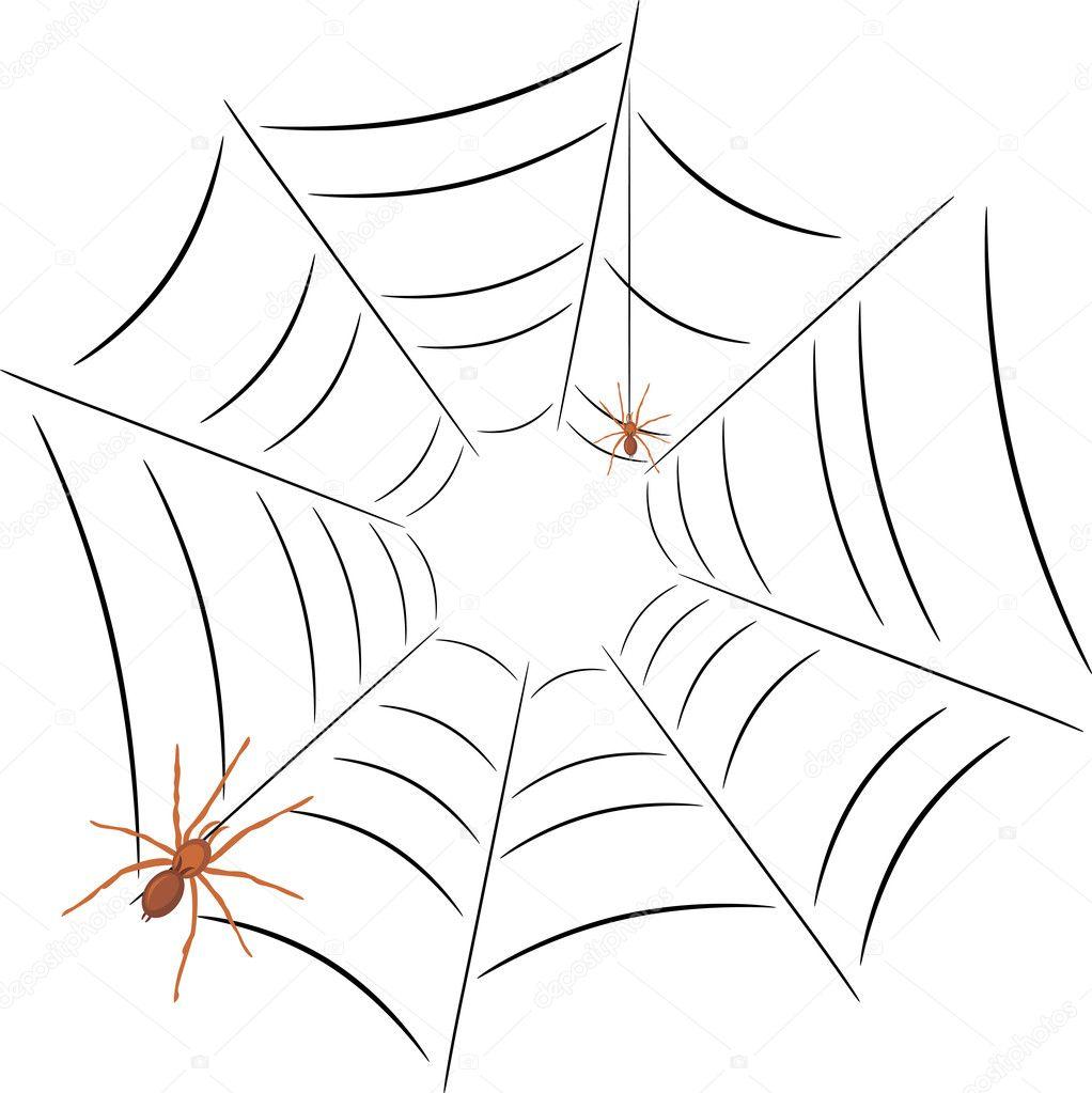 dos arañas en la telaraña — Vector de stock © teddy2007b #5835076