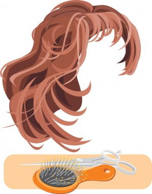 Hair, scissors and hairbrush isolated on the white