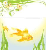 Goldfishes among algae