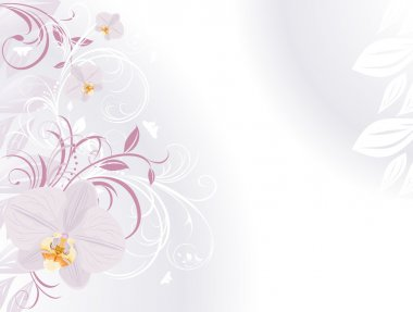 Orchids with decorative sprigs. Background for card