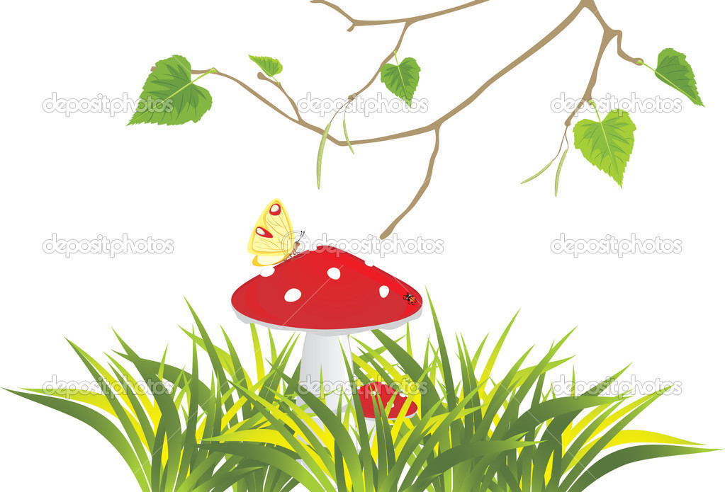 Fly agaric mushrooms in grass and birch sprig