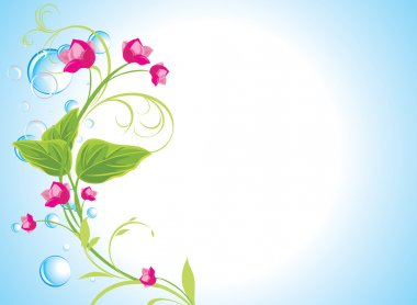 Drops and sprig with pink flowers on the abstract blue background
