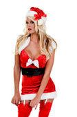 Fotografie Santas Sexy Christmas Helper