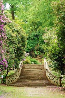 Anne Boleyn garden hever castle england