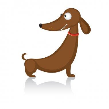 Cartoon funny dog breed dachshund