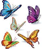 Photo Set of butterflies