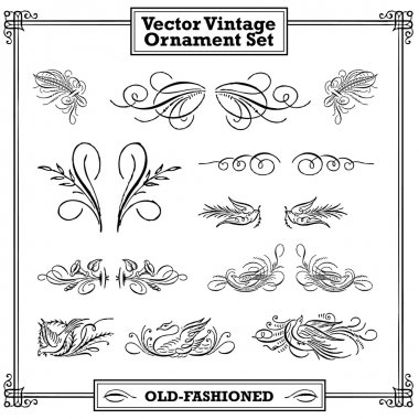 Vector Vintage Floral and Feather Ornament Set