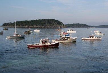 Fishing Boats in Bar Harbor