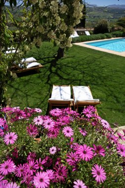 Luxury rustic hotel and swimming pool in countryside