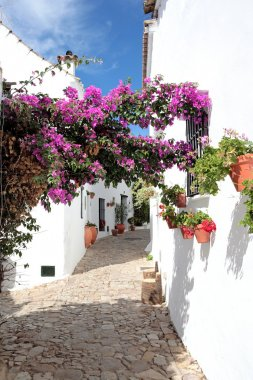 Narrow, cobbled streets and houses of Spanish Pueblo