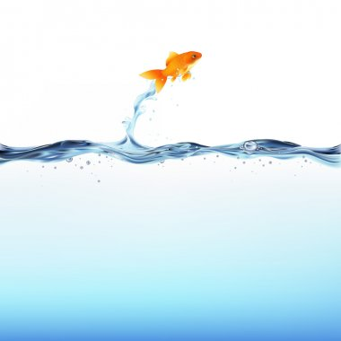 Goldfish And Water