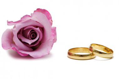 Wedding rings and pink rose.