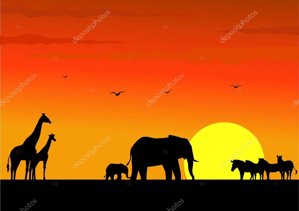 africa animal silhouette stock vector 5561969