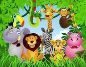 divoké zvíře v džungli