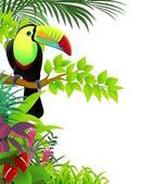 Vektoros illusztráció a trópusi dzsungelben tukán