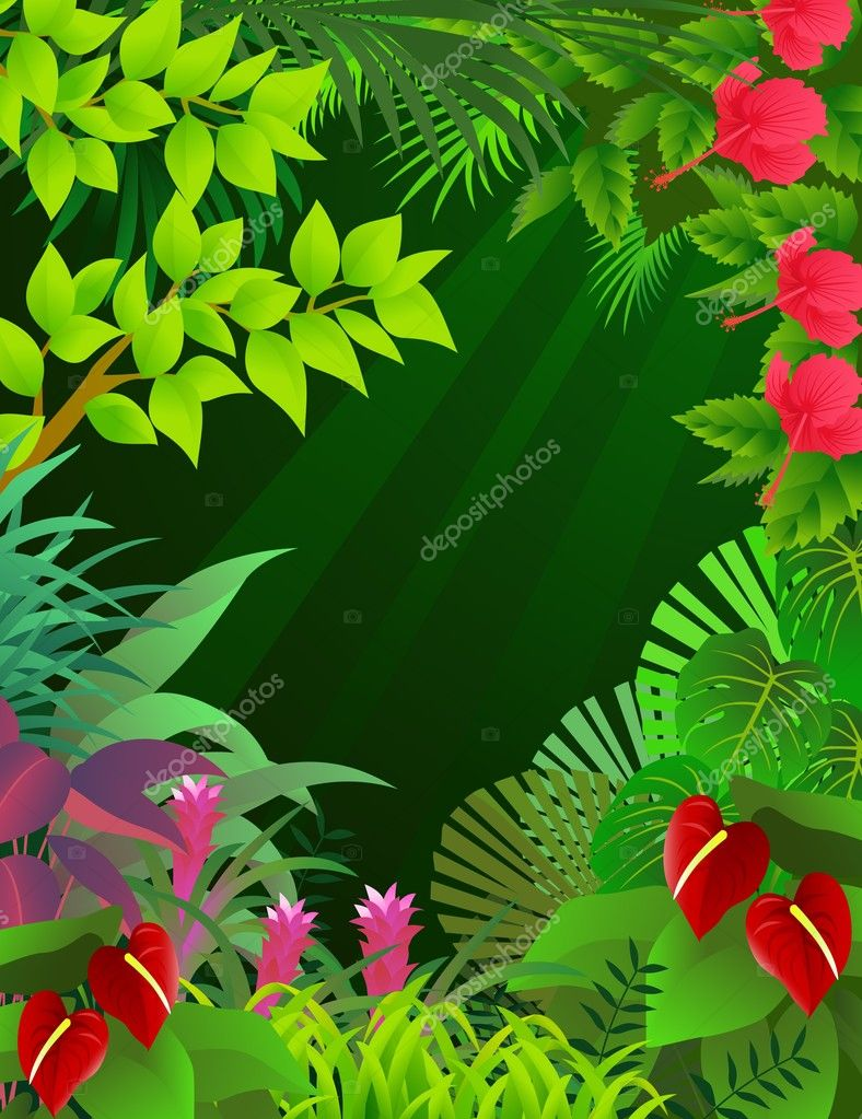 Illustration of tropical forest background