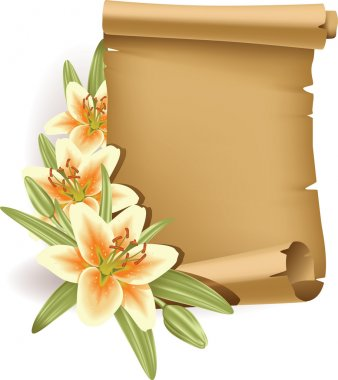 Vector illustration of greeting card with lilies and old scroll. stock vector