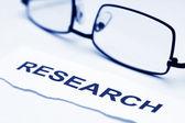 koncepce výzkumu