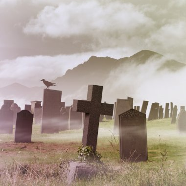 A Misty Graveyard, Cemetery with Tombstones and Crow stock vector