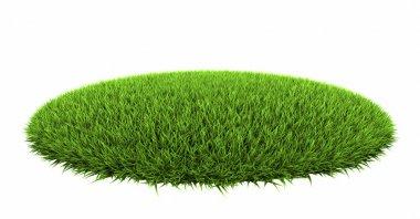Grass Arena