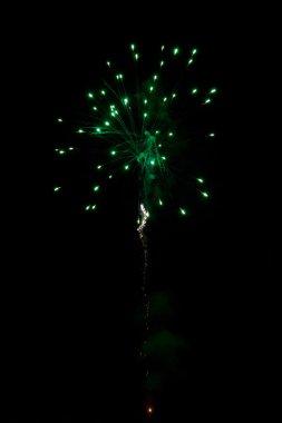 Green simple Firework